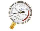 TN耐震压力表