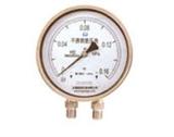 CYW不锈钢压力表