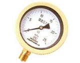 YE-BF不锈钢压力表
