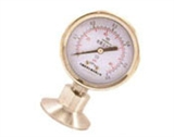 Y-MC卫生型隔膜压力表
