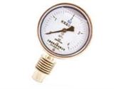 YTW-BF耐高温压力表