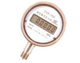 CYF-100数字压力表
