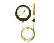 WTQ压力式温度计