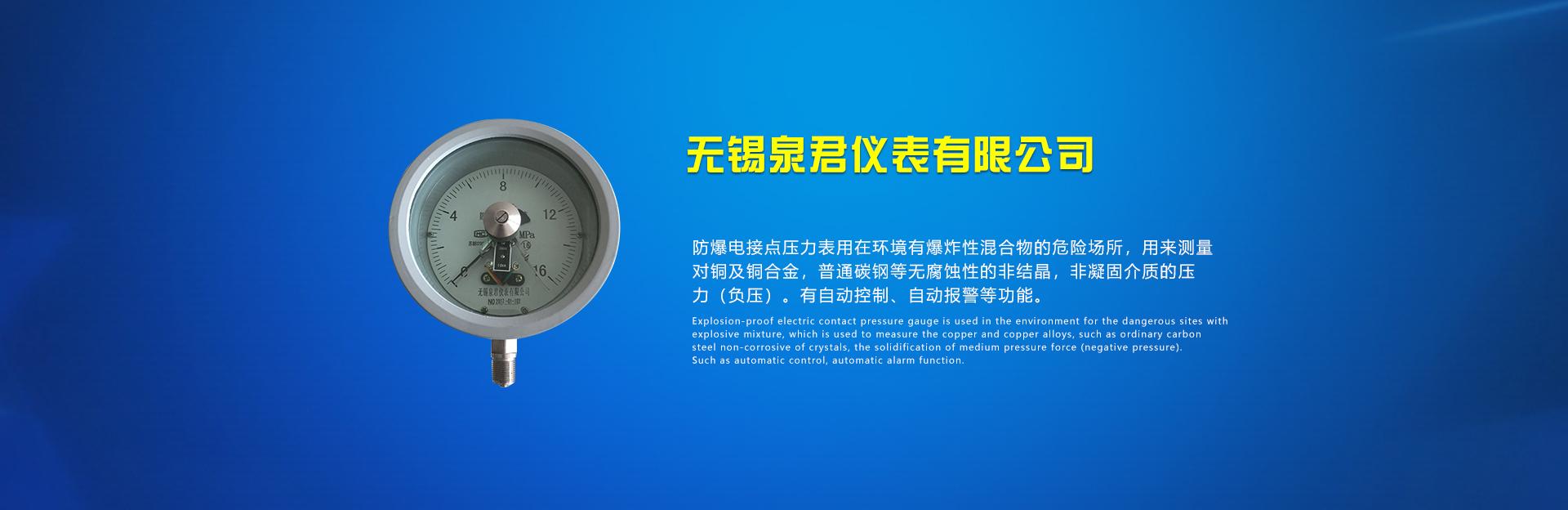 不锈钢耐震表